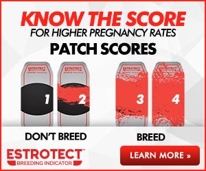 Estrotect Breeding Indicator