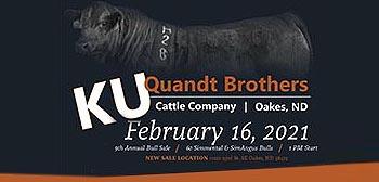 Quandt Brothers